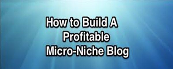 micro-niche-site
